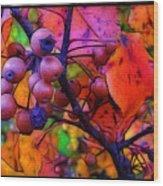 Bradford Pear In Autumn Wood Print by Judi Bagwell