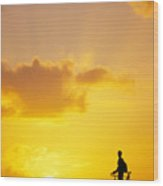 Break At Sunset Wood Print by Joe Carini - Printscapes