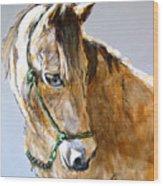 Buck Of The Morgan Horse Ranch Point Reyes National Seashore Wood Print by Paul Miller