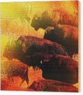 Buffalo Sun Wood Print by Terril Heilman