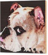 Bulldog Art - Let's Play Wood Print by Sharon Cummings