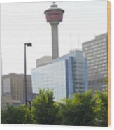Calgary Tower View 2 Wood Print by Donna Munro