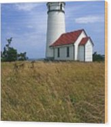 Cape Blanco Light Wood Print by Winston Rockwell