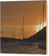 Caribbean Dawn Wood Print by Louise Heusinkveld