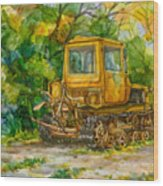 Caterpillar On Backyard Wood Print by Natoly Art