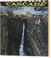 Central Cascade Bridge View Wood Print by InTheSane DotCom
