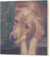Charlie's In The Doghouse Wood Print by Diane Caudle