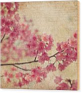 Cherry Blossoms Wood Print by Rich Leighton