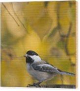 Chickadee On A Log Wood Print by Tim Grams