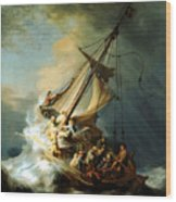 Christ In The Storm Wood Print by Rembrandt