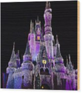 Cinderellas Castle At Night Wood Print by Carmen Del Valle