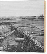 Civil War: Quaker Guns Wood Print by Granger
