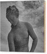 Classic Woman Statue Wood Print by Setsiri Silapasuwanchai