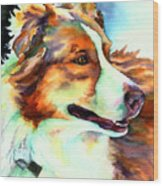 Cocoa Lassie Collie Dog Wood Print by Christy  Freeman