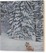 Collie Sable Christmas Tree Wood Print by Lee Ann Shepard