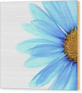 Color Me Blue Wood Print by Rebecca Cozart