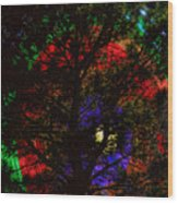 Colorful Tree Wood Print by James BO  Insogna