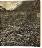 Corrugated Tin Pen Wood Print by Meirion Matthias