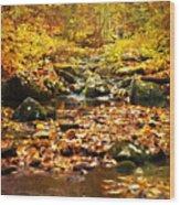Creek In The Woods Wood Print by Kathy Jennings