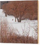 Crosscountry Skier Wood Print by Utah Images