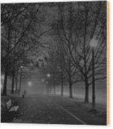 December Morning In Riverfront Park - Spokane Washington Wood Print by Daniel Hagerman