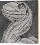 Deino Hatch Sketch Wood Print by Michael McKenzie