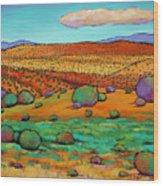 Desert Day Wood Print by Johnathan Harris