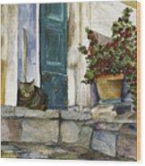 Di Gatto Wood Print by Barb Pearson