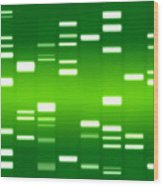 Dna Green Wood Print by Michael Tompsett