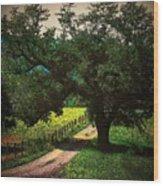 Down The Lane Wood Print by Joyce Kimble Smith