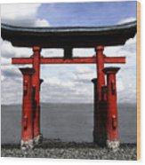 Dreaming In Japan Wood Print by David Lee Thompson