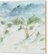 Dunes 3 Seascape Beach Painting Print Wood Print by Derek Mccrea