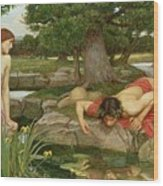 Echo And Narcissus Wood Print by John William Waterhouse