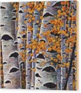Effulgent October Wood Print by Johnathan Harris