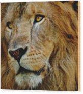 El Rey Wood Print by Skip Hunt