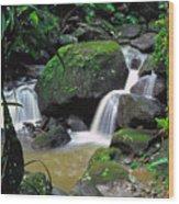 El Yunque National Forest Waterfall Wood Print by Thomas R Fletcher