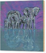 Elephant Family Wood Print by John Keaton