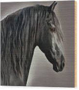 Equus Wood Print by Corey Ford