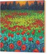Evening Poppies Wood Print by John  Nolan