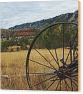 Ewing-snell Ranch 3 Wood Print by Larry Ricker