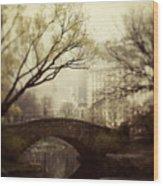 Fairy Of New York Wood Print by Irene Suchocki