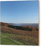 Fall In The Vineyards Wood Print by Joshua House