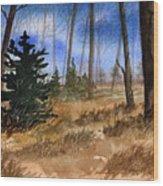Fall Meadow Wood Print by Sean Seal