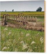 Farm Work Wiind And Rain Wood Print by Douglas Barnett