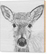 Female White-tailed Deer Wood Print by Marqueta Graham