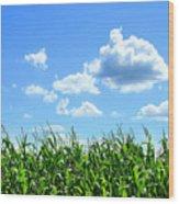 Field Of Corn In August Wood Print by Sandra Cunningham