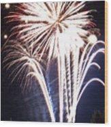 Fireworks No.3 Wood Print by Niels Nielsen