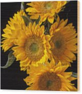 Five Sunflowers Wood Print by Garry Gay