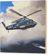 Flight Of The Seasprite Wood Print by Marc Stewart