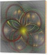 Floral Fractal 11-24-09 Wood Print by David Lane
